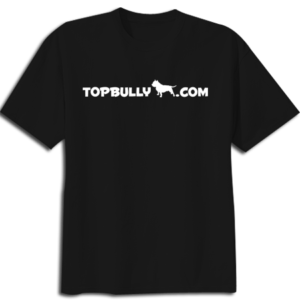 top bully shirt