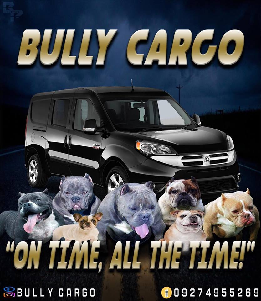 Bully Cargo