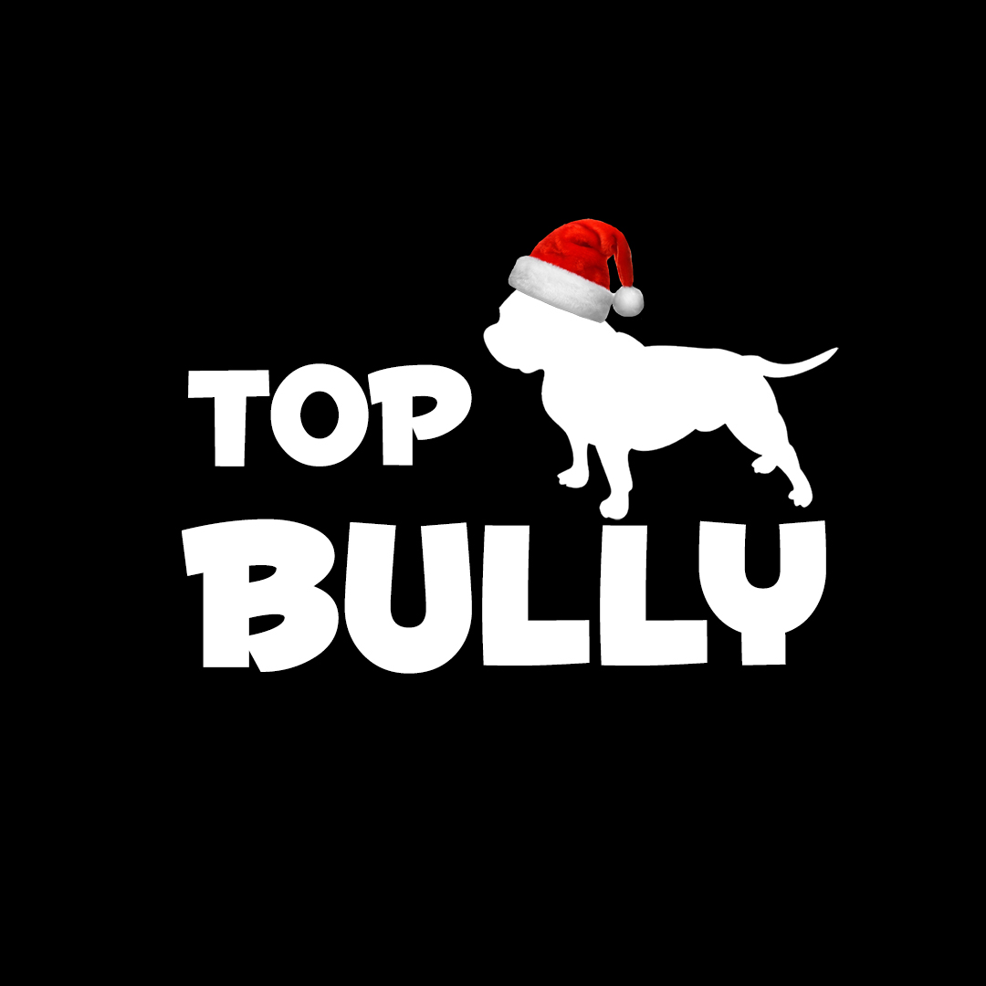 TopBully_Logo_Squre_2016_1080x1080_preview